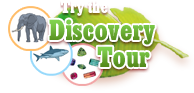 Try the Discovery Tour