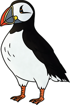 A horned puffin stands in the front of everyone a small bird with a striped beak.